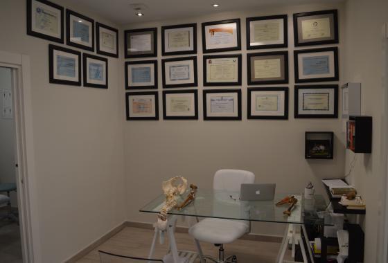 Clínica Fisioterapia Logroño FisioClinics Títulos